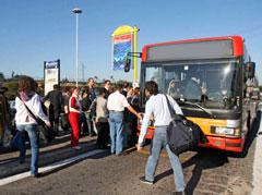 Linee bus nel XV