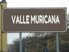 Valle Muricana