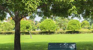 parco pubblico