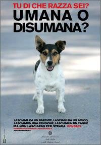 abbandono-cani.jpg