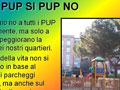 PUP SI - PUP NO