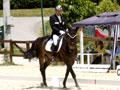 equitazione.JPG