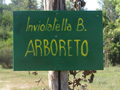 arboreto-involatella.jpg