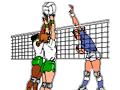 volley120.jpg