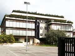 municipio-xv.jpg
