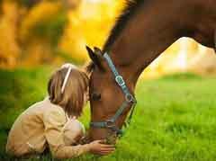 cavallo.jpg