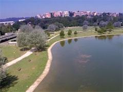 Lago di Tor di Quinto