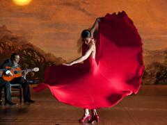 flamenco240.jpg