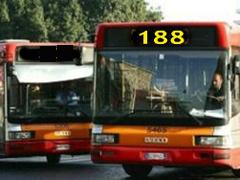 188-32-240.jpg