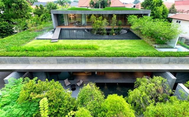 giardino sul tetto