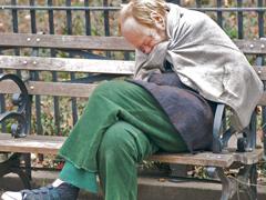 homeless240.jpg