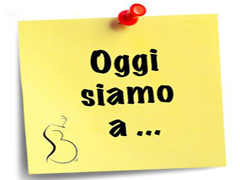 icona_appuntamenti.jpg