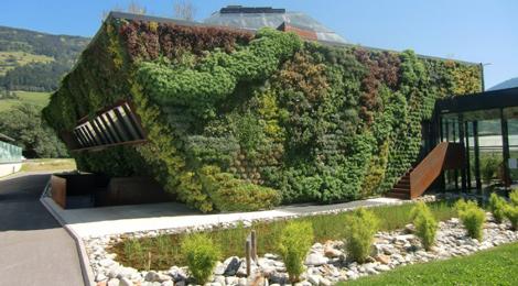 Un orto o un giardino sul tetto di casa perch no for Piani di costruzione casa verde