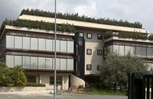 XV Municipio