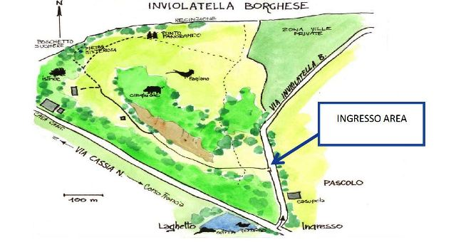 inviolatella