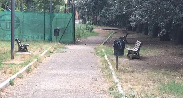 Area Cani dopo la pulizia