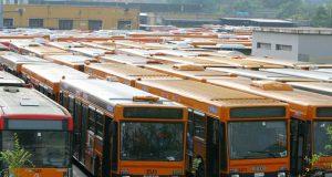 bus domeniche ecologiche