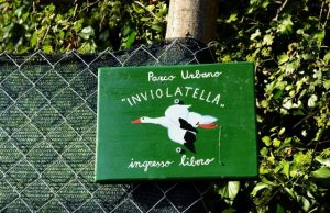 inviolatella-borghese