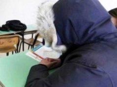 scuole al freddo