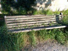 panchina-parco-tieri