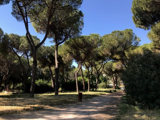 Parco Volpi