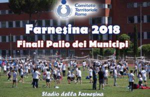 palio-municipi FIPAV
