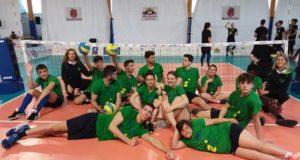 calamandrei-sitting-volley