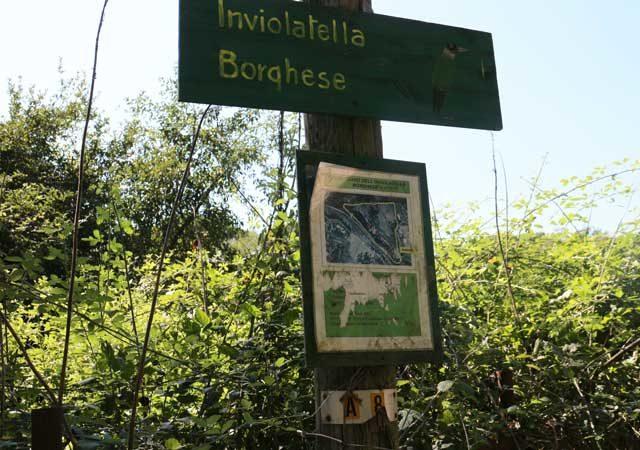parco-inviolatella-borghese