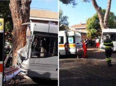 bus-contro-albero
