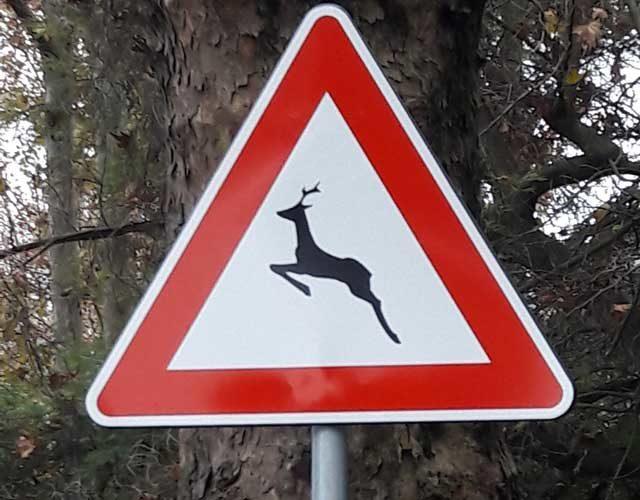 segnale-stradale