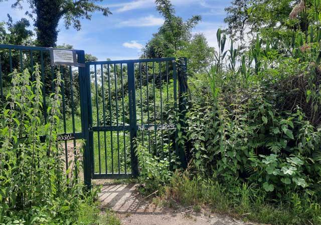 ingresso-parco-inviolatella